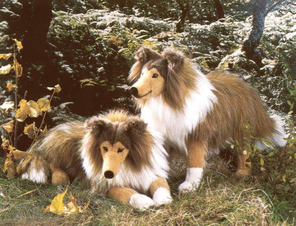 Produktbild 3880Collies.jpg